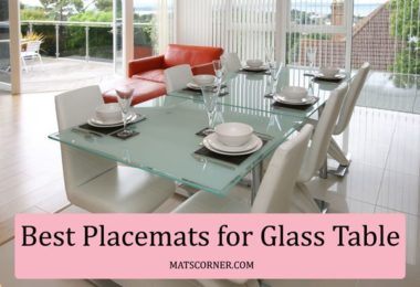 Best Placemats for Glass Table - [Washable, Heat & Slip Resistant]