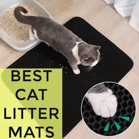 Top 10 Best Cat Litter Mats to Control Mess