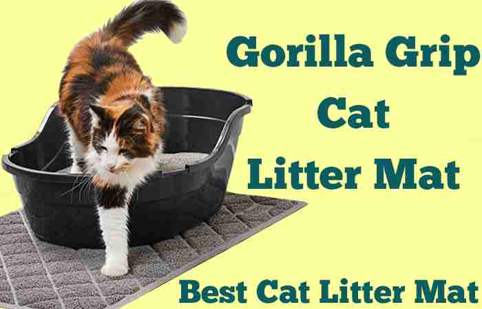 Gorilla Grip Cat Litter Mat Review [Soft, Durable, Easy to Clean]