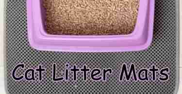 Do Cat Litter Mats Work? Let's Find Out